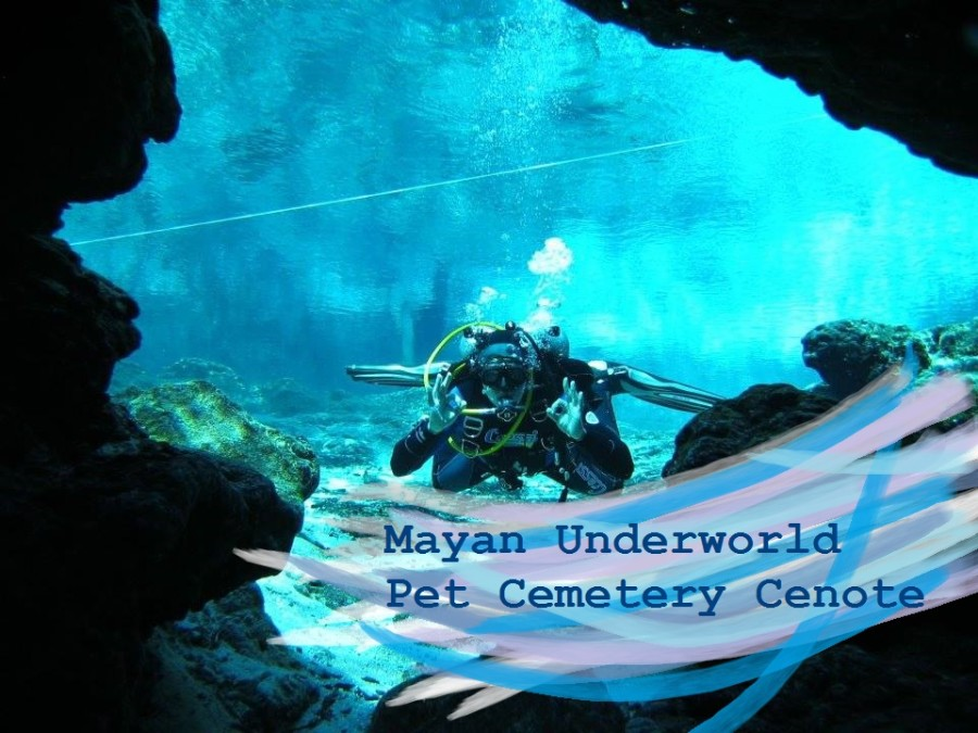 Pet cemetery diving cenote