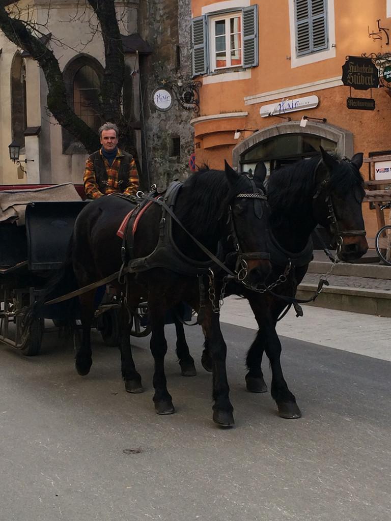 Kitzbühel horse riding