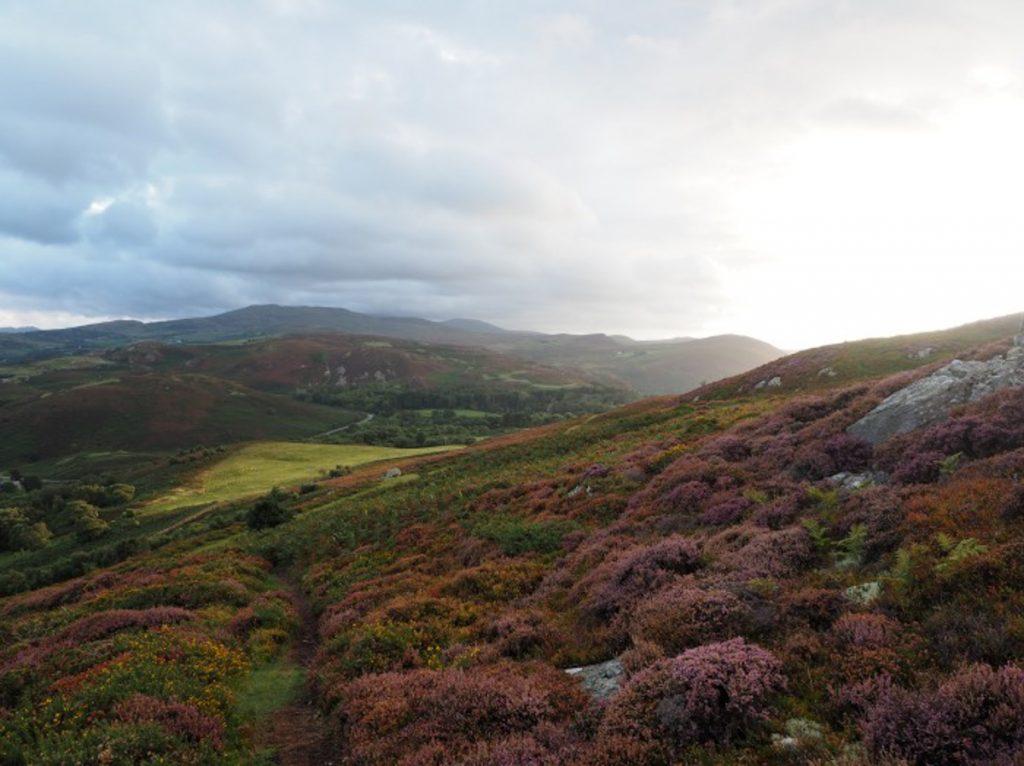 Mynydd Dref Conwy Mountain