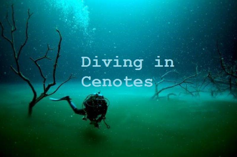 Angelita Cenote Playa del Carmen Mexico