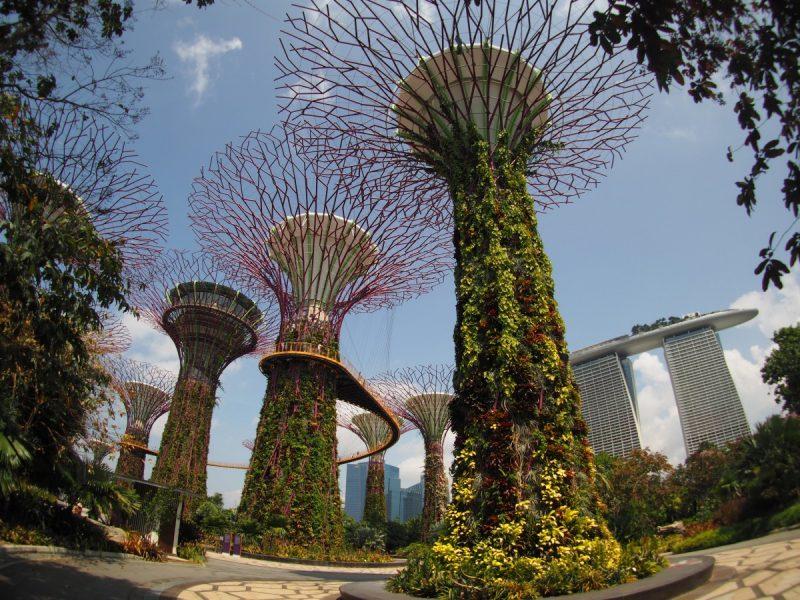 Singapur Was kosten drei Tage