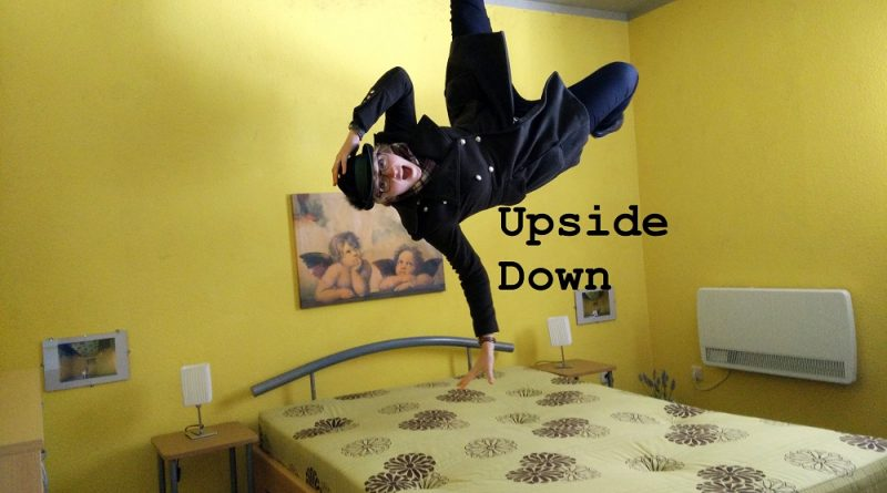 Upside down house rugen (7)